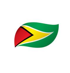 guyana flag vector image