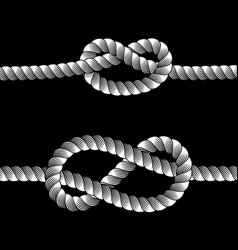rope knots borders line set design element vector image