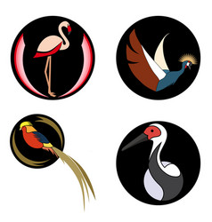 set of bright birds on black circles for logo vector image