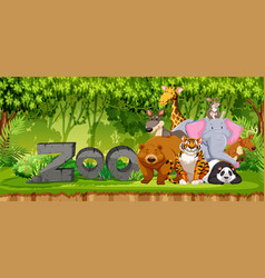 set of zoo animals in jungle vector image