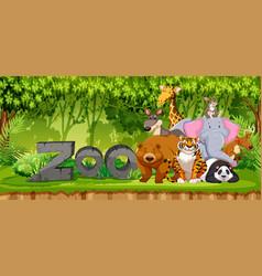 Set of zoo animals in jungle vector