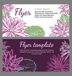 template with drawing water lilies vector image