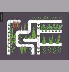 urban farming and gardening - hydroponics vector image