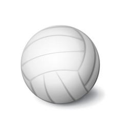 white volleyball ball icon isolated sports vector image