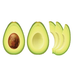 avocado half of the fruit and cut into slices vector image