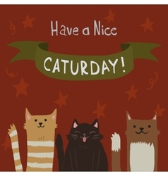 cartoon flat Cats Saturday Postcard vector image