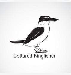 collared kingfishertodiramphus chloris isolated vector image