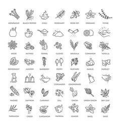 Condiment icons set vector