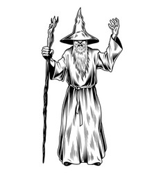 fantasy wizard isolated on white vector image