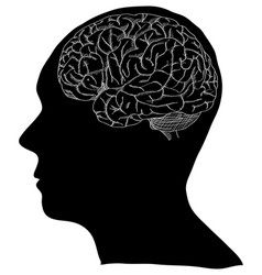 human brain sketched up eps vector image