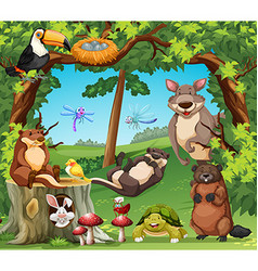 Many wildlife living in the woods vector