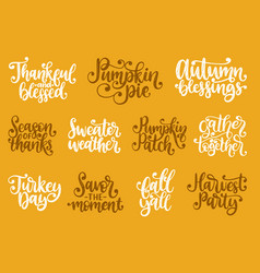set with lettering for thanksgiving day season of vector image
