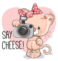 Cat with a camera vector