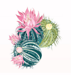 cactus flower in realistic high detailed style vector image