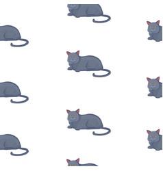 cat seamless pattern cute black kitten in vector image
