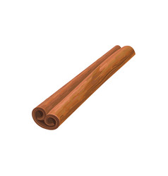 Detailed rolled cinnamon stick vector
