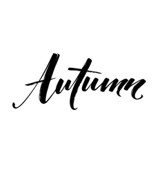 Fall Modern calligraph card Hand drawn lettering vector image