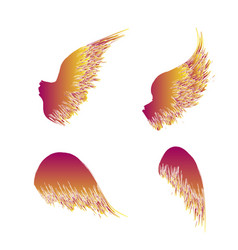four black wings vector image