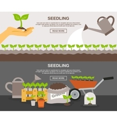 Seedling banner set vector