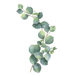 Watercolor Wreath With Green Eucalyptus Royalty Free Vector