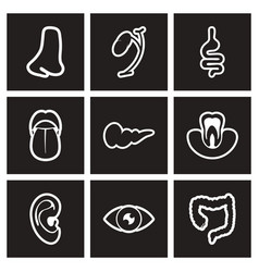 assembly stylish black and white icons human vector image