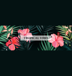 botanical hibiscus and royal luxury palm exotic vector image