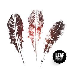 dandelion leaf print variants vector image