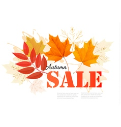 Enjoy Autumn Sales banner with autumn leaves vector image