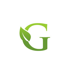 letter g leaf nature logo vector image