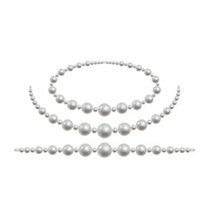 Pearl necklace isolated white beads vector