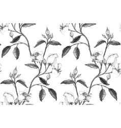 seamless pattern made of pencil sketched rose vector image