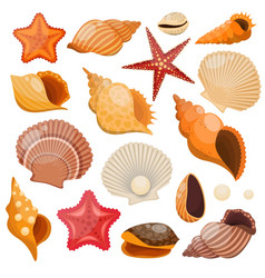 Shells And Sea Stars Icon Set vector