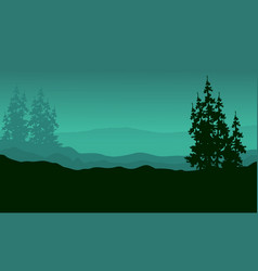 Silhouette of spruce on the hill scenery vector