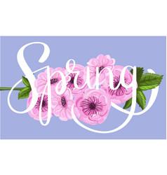 sakura flower lettering vector image