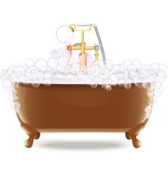 Bathtub With Foam vector image vector image