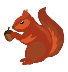 squirrel icon acorn vector image vector image