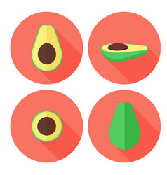 avocado fruit set in flat style with circles vector image vector image