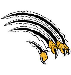 Bird claws logo vector