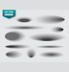 shadows set on transparent background vector image