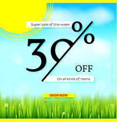 summer sale get up thirty percent discount vector image