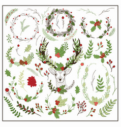 hand drawn christmas floral elements vector image