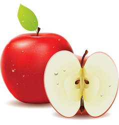Red apple and half of apple vector image