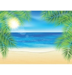 Sand beach and the palm branches at sunset time vector image