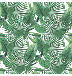 tropical leaves seamless pattern white background vector image