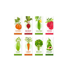 vertical cards or banners set fresh vegetables vector image