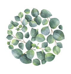 watercolor card with green eucalyptus vector image