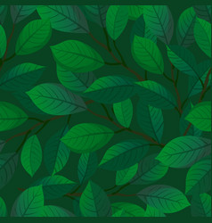branches and leaves seamless pattern vector image