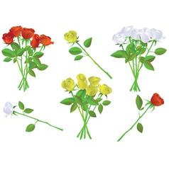 colorful rose bouquet set vector image