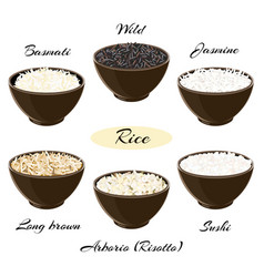 Different types of rice in bowls vector