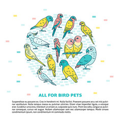parrots round concept banner in line style vector image